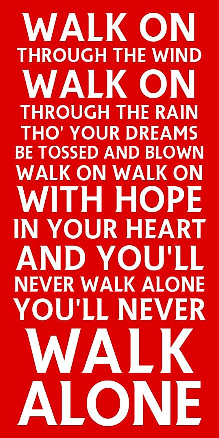 143b1339d METAL SIGN ≈ YOU LL NEVER WALK ALONE ≈ CHOICE OF 3 SIZES  MAXI (39cm x ...