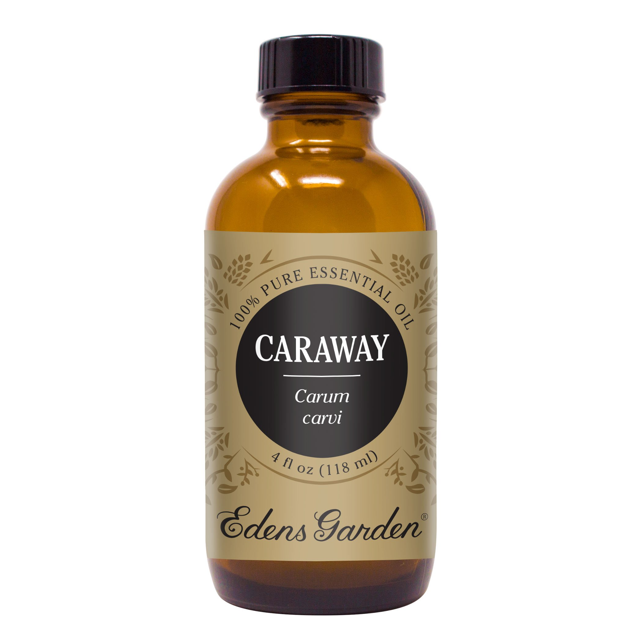 Edens Garden Caraway Essential Oil, 100% Pure Therapeutic Grade (Highest Quality Aromatherapy Oils- Inflammation & Pain), 118 ml