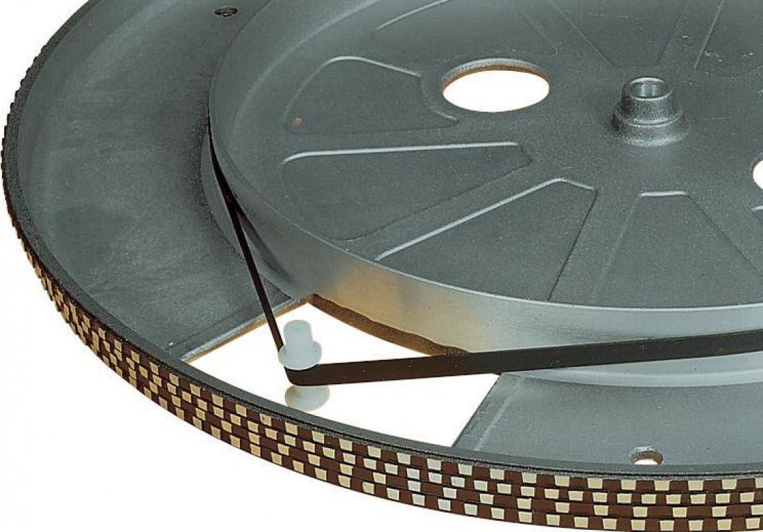 Electrovision - Correa para tocadiscos (195 mm), color negro ...