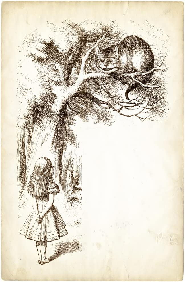 Alice and The Cheshire Cat 1899 Antique Style Engraving Photo Photograph Cool Wall Decor Art Print Poster 12x18