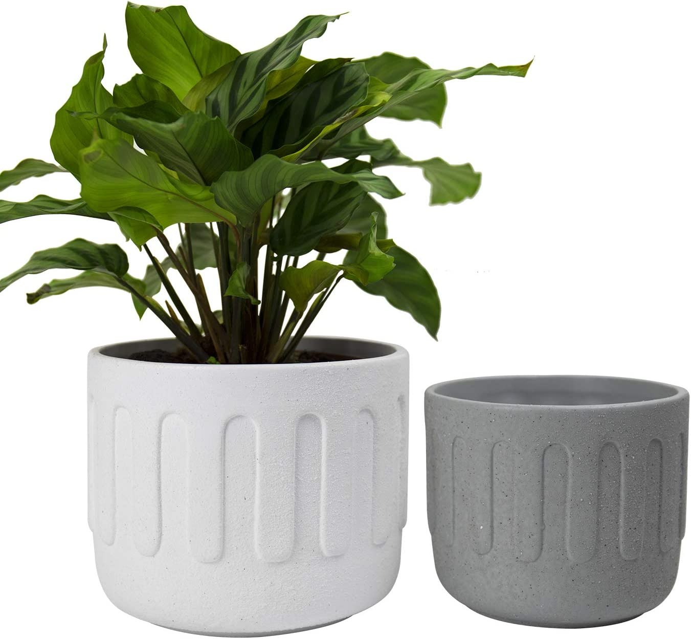 LA JOLIE MUSE Ceramic Plant Flower Pots Indoor - 6.3 Inch Set of 2 White and Grey Modern Round Planters with Drainage Hole
