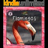 Safari Readers: Flamingos (Safari Readers - Early Readers for Kids Book 2)