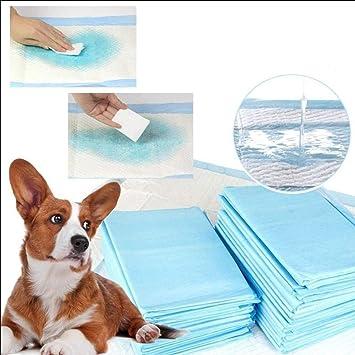 SMACO Pañales Desechables para Mascotas Pañales Absorbentes para Mascotas Pañales Desechables para Perros,S