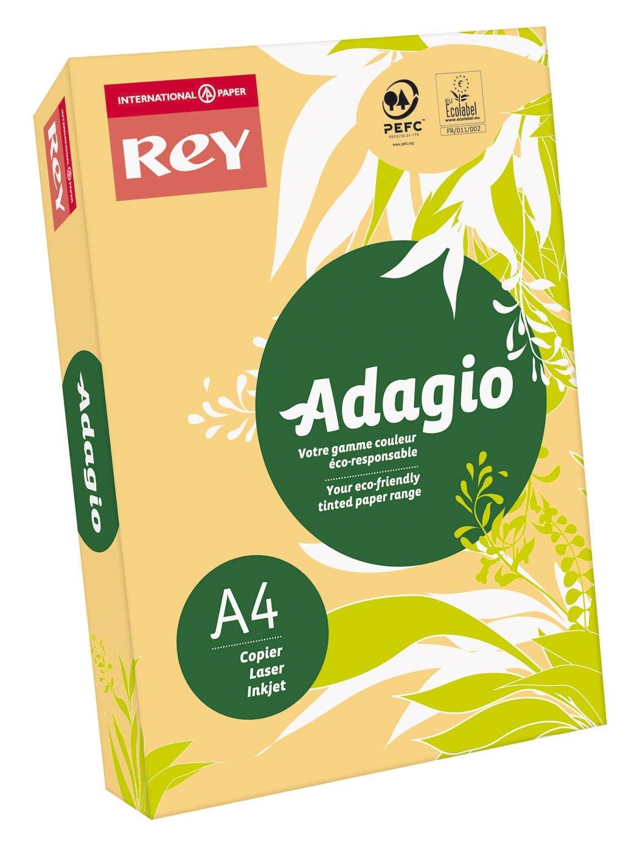 Papeteries de France 336113 Adagio - Paquete de folios para ...