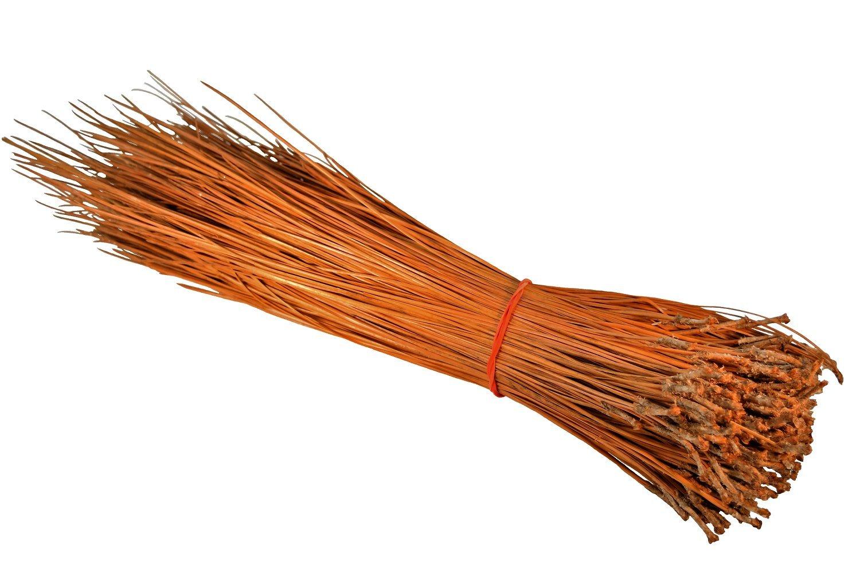 1lb Long Leaf Pine Needles for Basket Making, Crafting, Mat Weaving, Sculptural Weaving