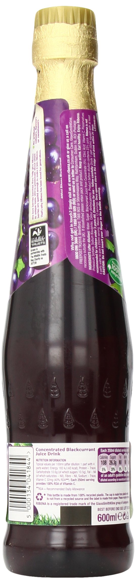 Ribena Original Blackcurrant Drink, 600 ml Bottle (Pack of 12) by Ribena (Image #7)