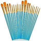 Soucolor Acrylic Paint Brushes Set, 20Pcs Artist Paintbrushes Paint Brushes for Acrylic Oil Watercolor, Canvas Body Face…