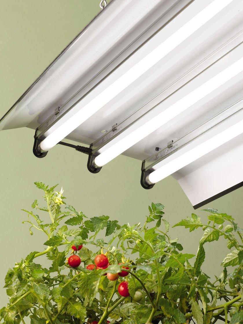 (Pack of 6) F54T5/865/HO 54-Watt T5 High Output Daylight Bulbs 6500K Fluorescent light bulb tube