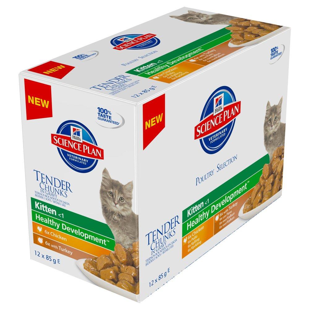 Hills Feline Kitten Multipack Chicken & Turkey Comida para Gatos - Paquete de 12 x 85 gr - Total: 1020 gr: Amazon.es: Productos para mascotas