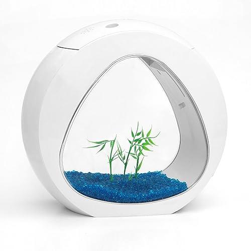 allpondsolutions-Kleines-Nano-Kurven-Aquarium