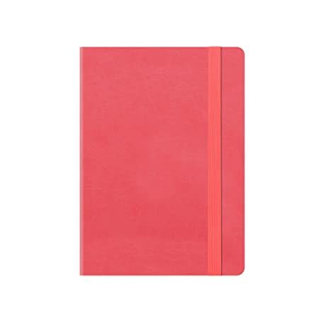 Pequeño Weekly Diary With Notebook 18 MONTH 2019/2020 - Neon ...