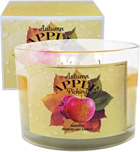 96NORTH Soy 3-Wick Autumn Apple Candle, Fall Soy Candle, Apple Cinnamon Candles // Fall Candles, Fall Scented Candles for Home, Autumn Leaves Candle, Fall Scents, Candles for Home Scented