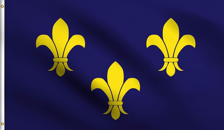 DMSE Blue Fleur De Lis Few French France Royal Flag 3X5 Ft Foot 100% Polyester 100D Flag UV Resistant (3' X 5' Ft Foot)