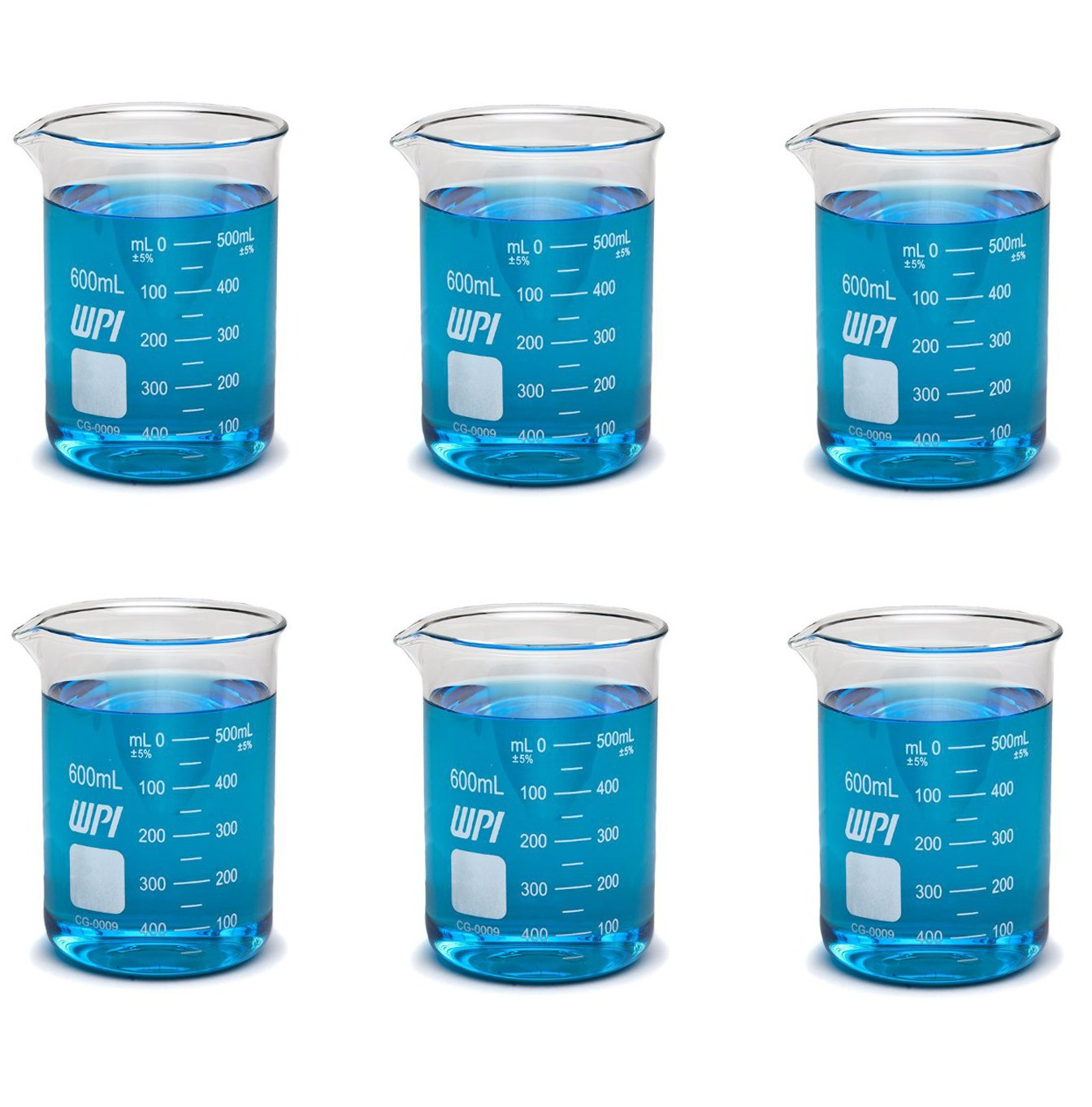 WPI CG-0009 Borosilicate Glass Griffin Beaker with Spout, 600mL Capacity (Pack of 6)