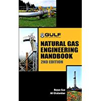 Natural Gas Engineering Handbook (English Edition)