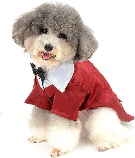 Zunea Traje Formal para Perro pequeño para Disfraz de Esmoquin de ...