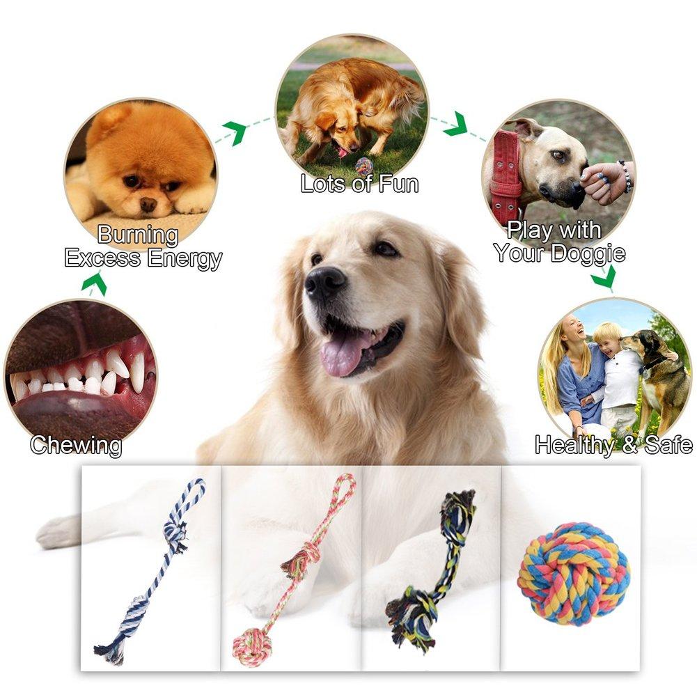 Juguetes de cuerda para perro cuerda de algod/ón para limpiar los dientes juguetes para peque/ños cuerda de color Angker para masticar juguetes medianos y 4 paquetes de regalo