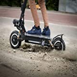 Amazon.com : QIEWA QPOWER Duble Motors Off Road Scooter ...