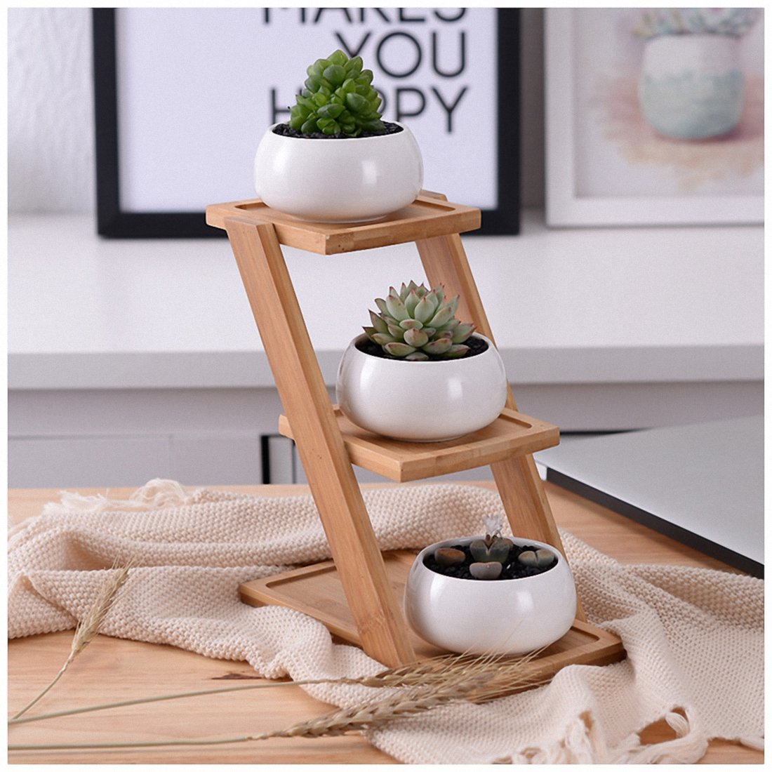 SODIAL Decorative Small Round Succulent Plant Pot 3 Tier Bamboo Stand-Window Display-Home Decoration (White)