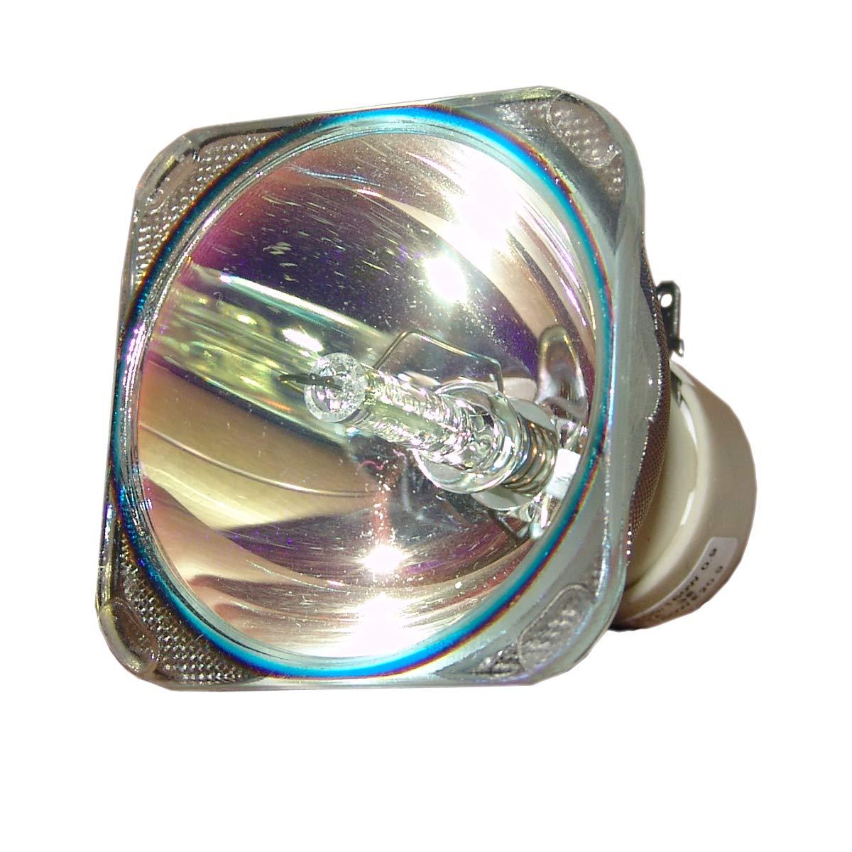 SpArc プロジェクター交換用ランプ 囲い/電球付き Viewsonic PJD6355用 Platinum (Brighter/Durable) Platinum (Brighter/Durable) Lamp Only B07MPR7KB5