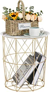 Tiita Laundry Basket Coffee Table Storage Basket Gold Modern Side Table Small Metal End Table with Lifting Plate(White)