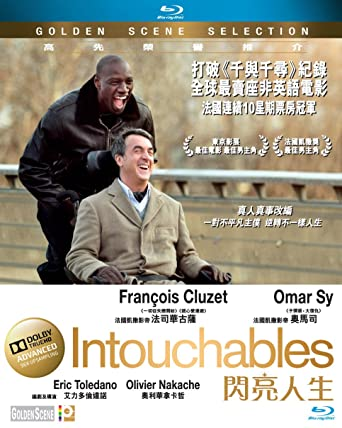 the intouchables region a english chinese subtitled french movie