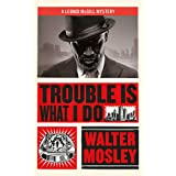 Trouble Is What I Do: Leonid McGill 6 (Leonid McGill mysteries)