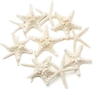 Maicodes 12 PCS Starfish | 2.5-6 Inch Starfish Decor | Natural Bulk Starfish Shells Perfect for Crafts Making Beach Theme Party Wedding Decoration, Home Wall Decor, Christmas Ornaments, Fish Tank