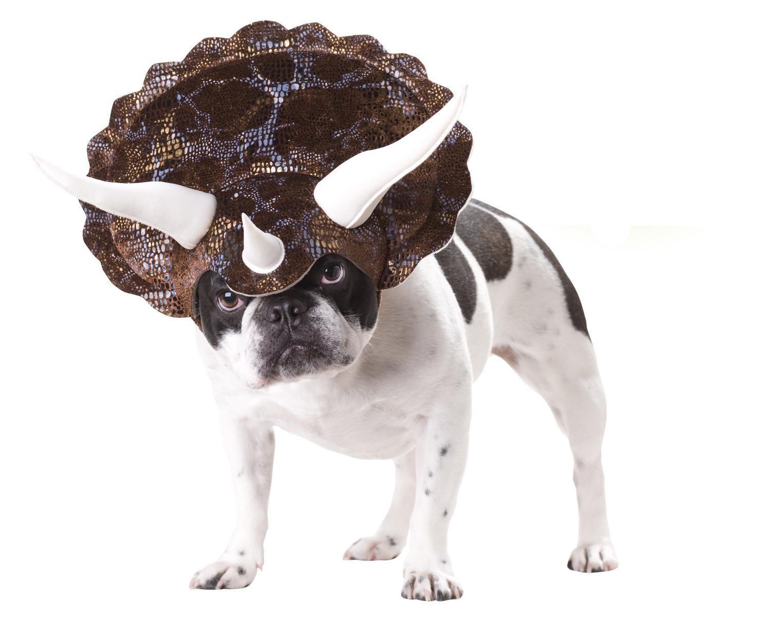 Animal Planet PET20104 Triceratops Dog Costume, Medium