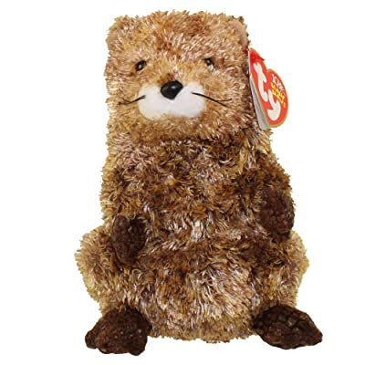 Ty Beanie Babies PUNXSUTAWN-e Phil - Groundhog (Ty Store Exclusive): Toys & Games