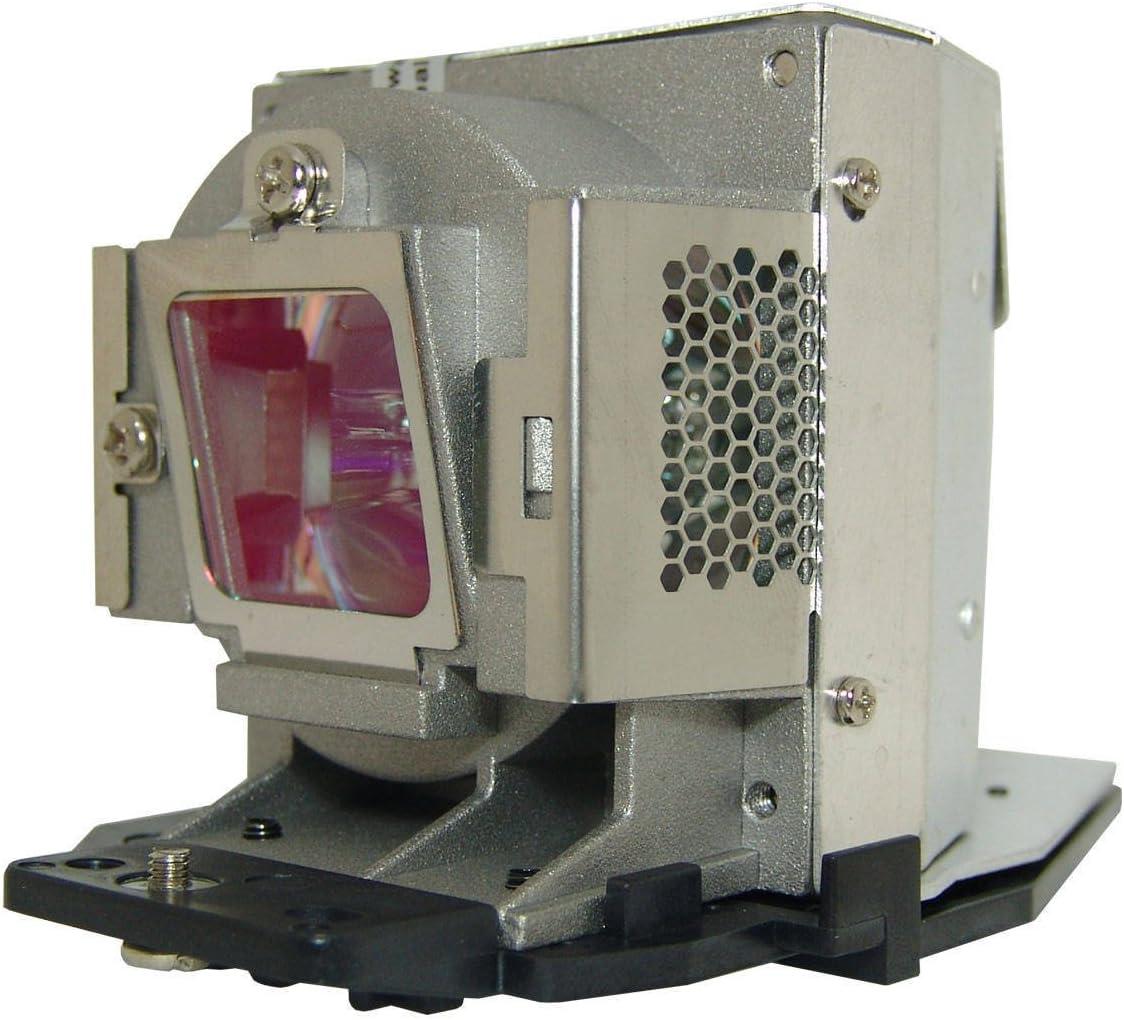 Viewsonic Original RLC-057 Projector Lamp