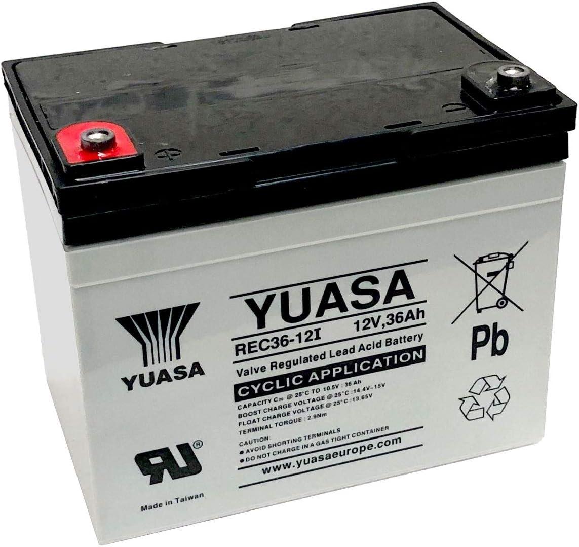 Yuasa - Batería Plomo AGM REC36-12I 12V 36Ah M5-F
