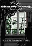 Reihe «Ein Blick durch die Vorhänge» mit 200 erotischen Geschichten. Sammelband Nr. 7 (Erzählungen 151-175): Illustrierte Sexgeschichten, die Ihre erotischen Fantasien anregen werden