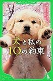 犬と私の10の約束 (角川つばさ文庫)