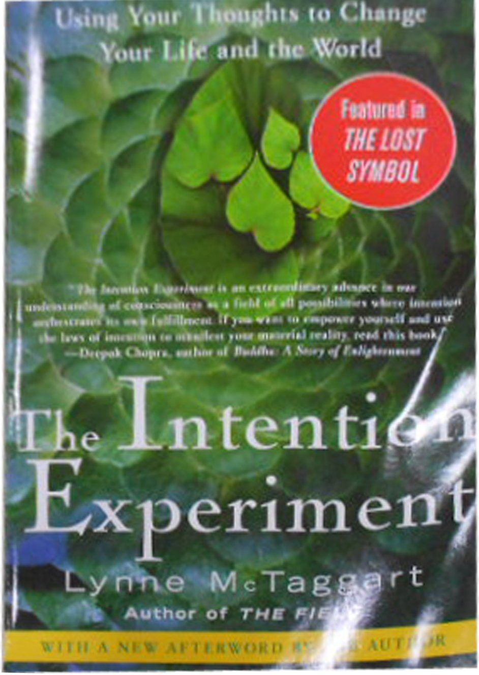 the intention experiment lynne mctaggart