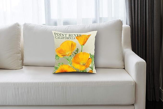 Amazon.com: Lantern Press Point Reyes, California - Poppies ...