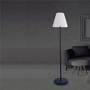 Amazon.com: Whiteline Furniture Lumi - Lámpara de pie solar ...