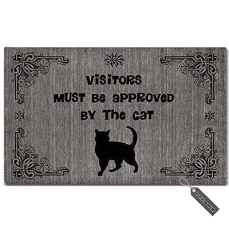 MsMr Felpudo – Felpudo visitantes Debe ser Aprobado por el Gato Creativo para Puerta Alfombrilla Entrada