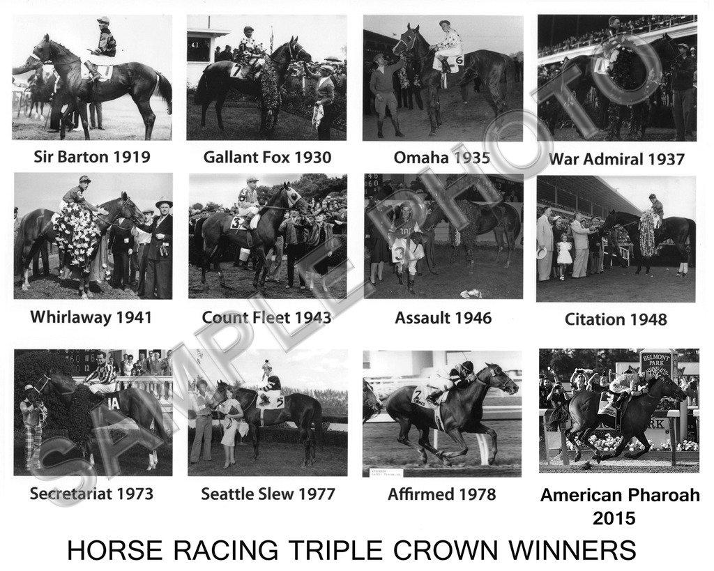 SPORTSPHOTOSUSA American Pharoah Secretariat War Admiral Affirmed Seattle Slew Triple Crown Winners Horse 11x14 Photo