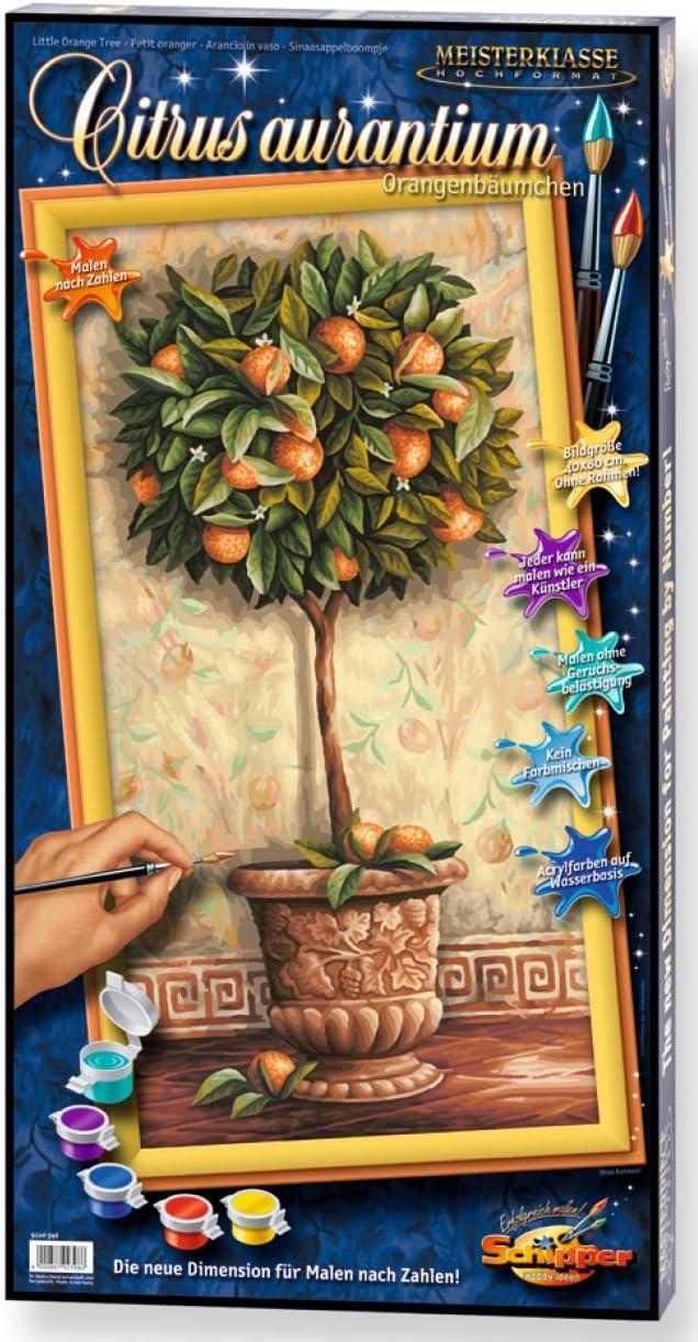 Citrus aurantium Schipper Malen nach Zahlen