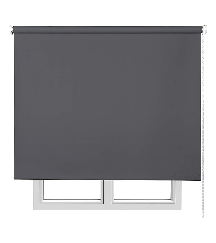Abdunkelungsrollo Basic Blickdicht Rollo, grau Medium 120x6x250 cm dunkelgrau