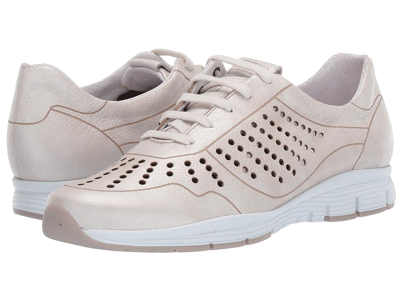 史上最も激安 [メフィスト] レディースウォーキングシューズカジュアルスニーカー靴 Yliane Yliane [並行輸入品] (US B07N8C5KZ6 8) Off-White Ceylan 38 (US Women's 8) (25cm) B - Medium 38 (US Women's 8) (25cm) B - Medium|Off-White Ceylan, ドッグパラダイスぷらすニャン:9049ba89 --- afisc.net