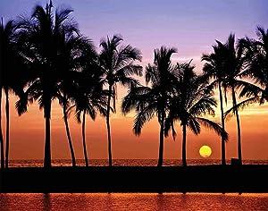 MQPPE Hawaiian 5D DIY Diamond Painting Kits, Hawaiian Sunset on Big Island Anaehoomalu Bay Ocean Romantic Resort Full Drill Painting Arts Set Craft Canvas for Home Wall Decor, 12