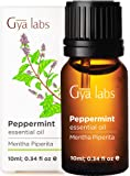 Gya Labs Peppermint Essential Oil For Hair Growth, Muscle Pain Relief & Headache Relief - Topical Use For Sinus Relief…