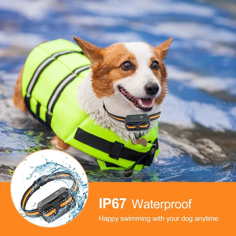 5 Sensitivity NinjaDog Anti Bark Collar 2020 Rechargeable /& Waterproof Dog Bark Collar with Beep Vibration and Harmless Shock Stop Barking Training Collars for Small Medium Large Dogs