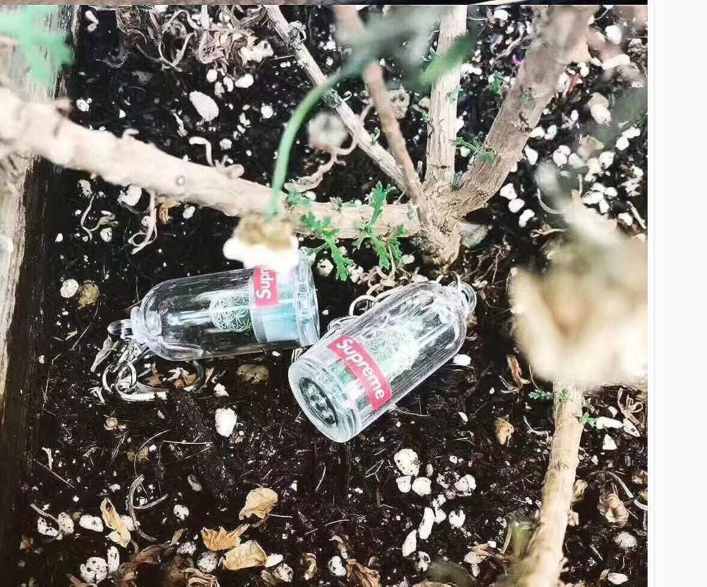 Amazon.com: JCDS Sup 18ss Cactus - Llavero, color blanco ...