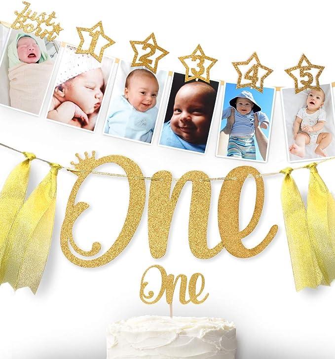 Elmo Newborn thru one year photo banner Great for birthday parties