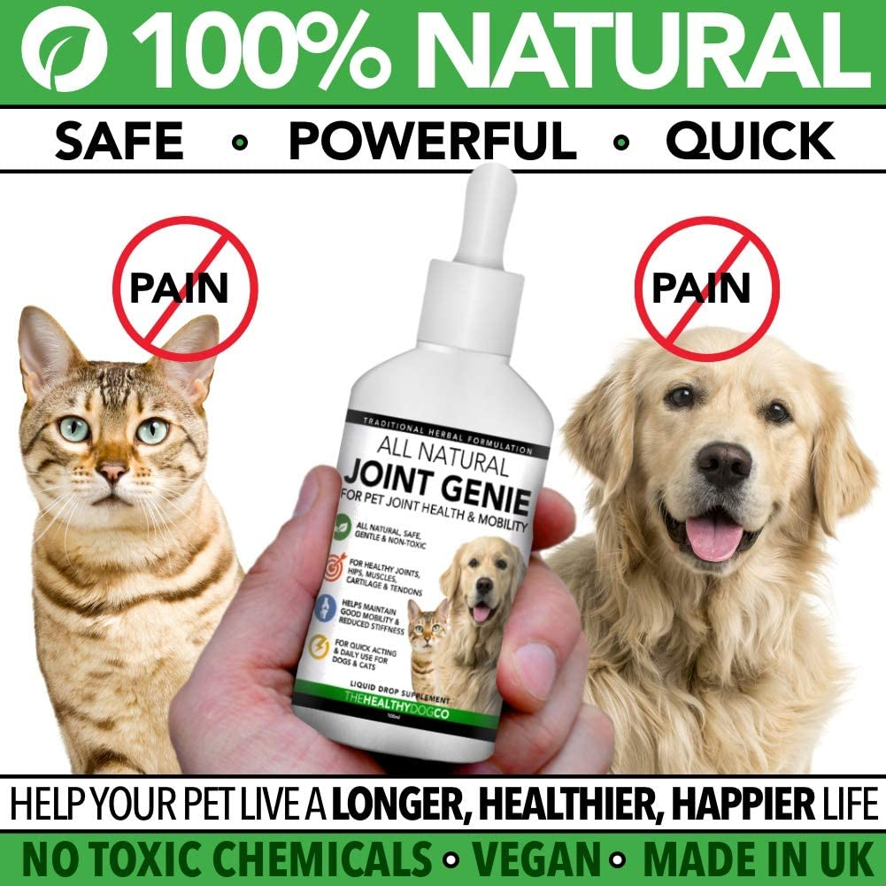 All Natural Joint Genie High Strength Joint Care For Dogs And Cats 100 Servings Quick Acting Liquid Dog Joint Care Supplements For Stiffness Support Care For Young