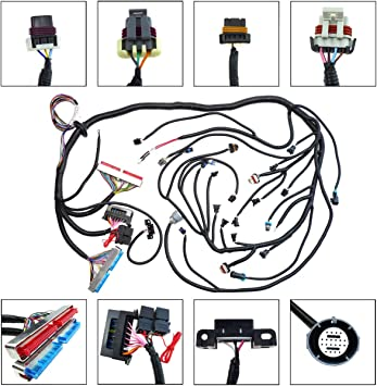 Amazon.com: LS1 Standalone Wiring Harness with 4L60E Transmission Drive By  Cable Throttle Body for 1997-2006 DBC LS1 Engines 4.8 5.3 6.0, with Wiring  Guide Manual: AutomotiveAmazon.com