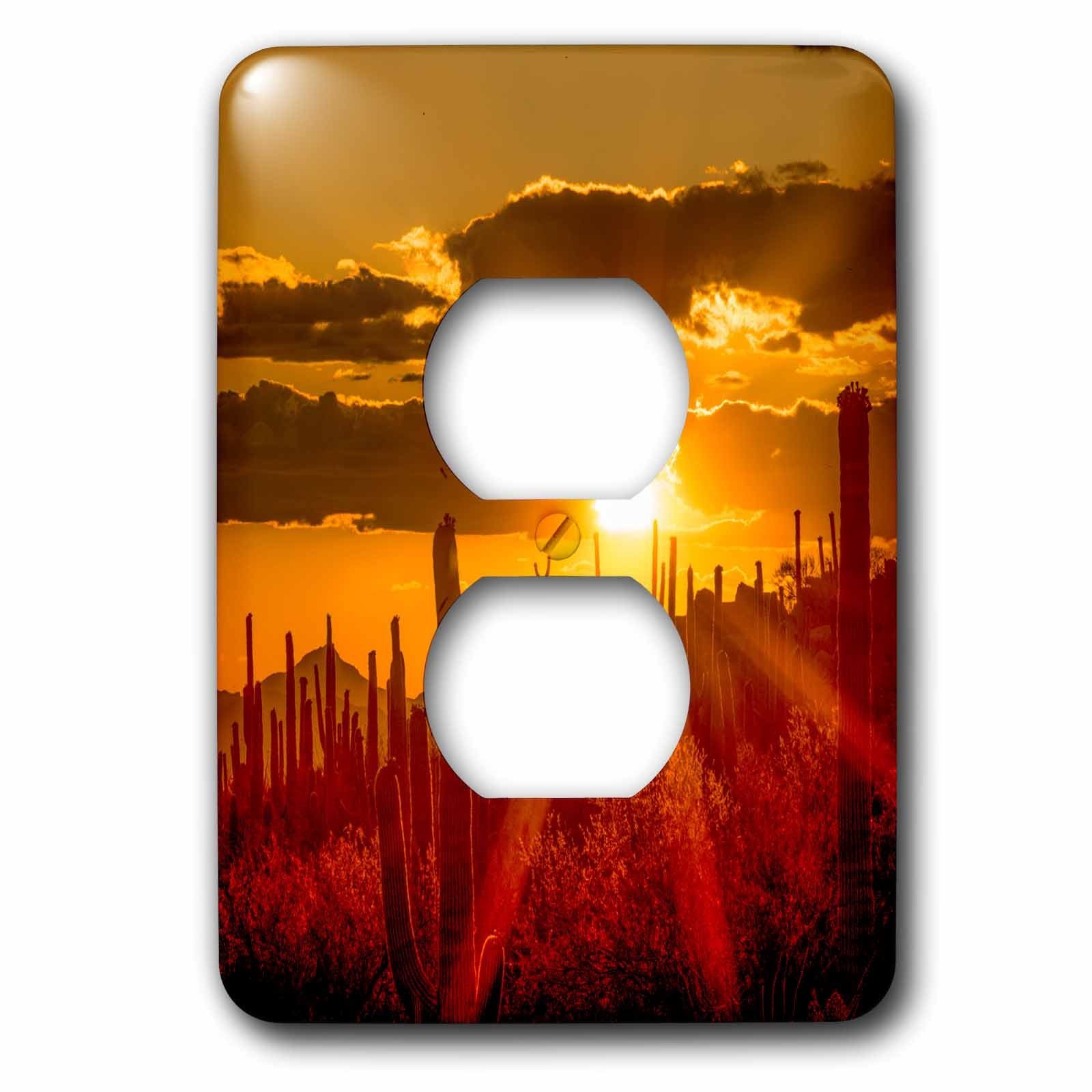 3dRose Danita Delimont - Sunsets - USA, Arizona, Tucson, Orange sunset over Saguaro National Park - Light Switch Covers - 2 plug outlet cover (lsp_278475_6) by 3dRose
